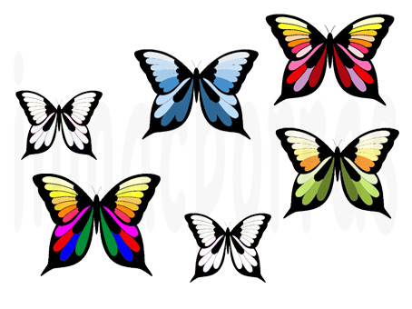 Imagenes de mariposas de colores mariposas coloridas - Imagenes de mariposas de colores ...
